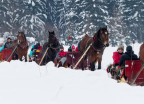 Kulig w Zakopanem– zimowa atrakcja dla młodszych i starszych